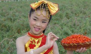 Foto di Ragazza Cinese con le bacche di Goji