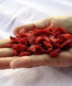 foto della dose giornaliera di 25 grammi di bacche di goji