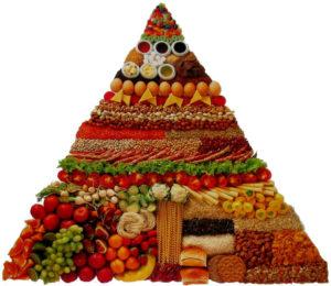 piramide alimentare vegetarianesimo 300x260