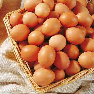 sostituire-uova