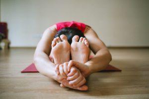 Un albero, molti rami. I vari tipi di yoga come espressione di una sola radice.