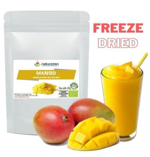 Mango biologico in polvere