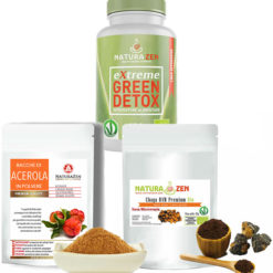 Green Detox Acerola Chaga 247x247