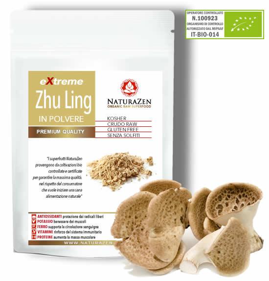Zhu Ling BIO in polvere 60g