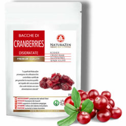 busta 250g cranberries raw biologiche naturazen 247x247