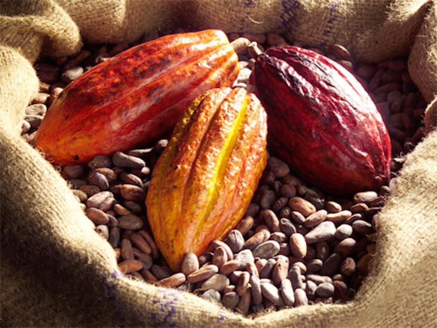 cacao crudo granella fave biologico 2 naturazen