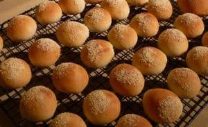 semi-di-chia-panini